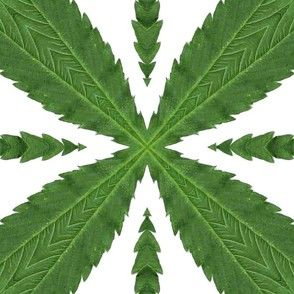 Cannabis-Pattern-03