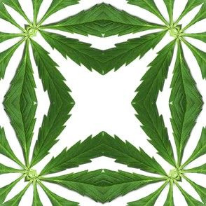 Cannabis-Pattern-07