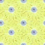 Rrrsunflower2011_ed_shop_thumb