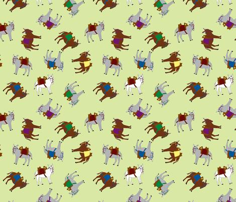 donkeytopsy2