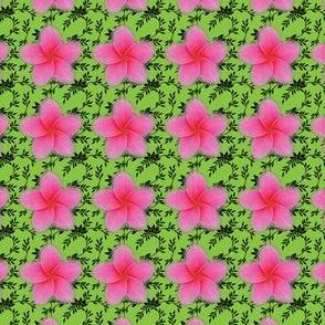 green-vine-sizzler