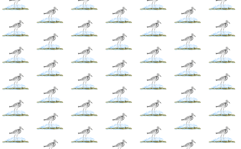 Sea Birds fabric by sewbiznes on Spoonflower - custom fabric