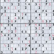 Rrrsudoku_byhand_preview_shop_thumb