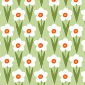 Rgreen_daffodil2_shop_thumb