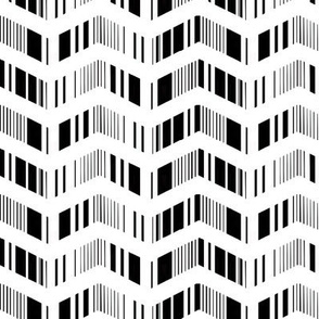 zigzag zebra