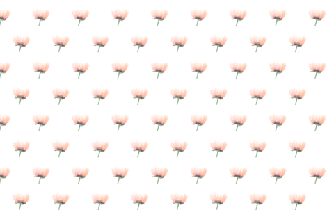 Pink Poppy Love fabric by lesfleursdemimi on Spoonflower - custom fabric