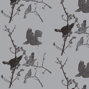 Blackbirds on Grey