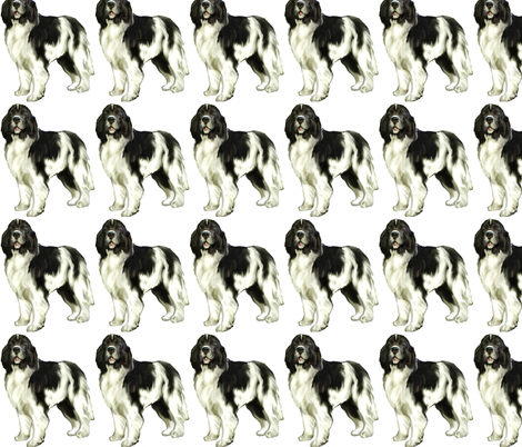 Landseer newfoundland dog fabric by dogdaze_ on Spoonflower - custom fabric