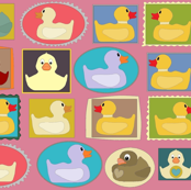 pink rubber duckies