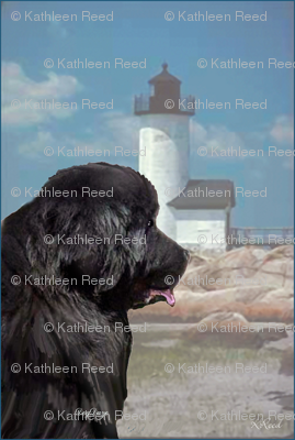 Newfoundland_and_lighthouse