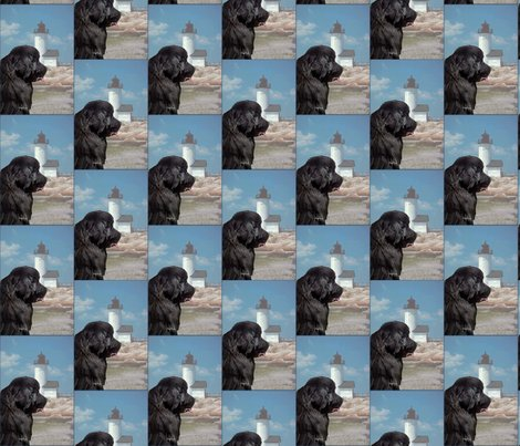 Rrrrrnewfoundland_and_lighthouse_portrait_style_shop_preview