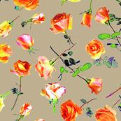 roses beige col. 6