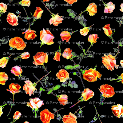 roses black col. 1