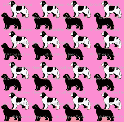 Repeating Pattern Newfoundland Dogs
