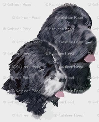 black_and_landseer_portrait
