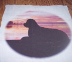 Rrrrrnewfoundland__sunset_comment_90197_preview