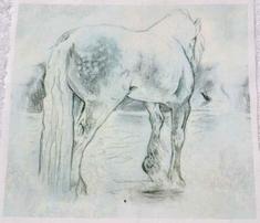 Rrrrrrgypsy_horse_0563c_comment_522412_thumb