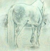 Rrrrrrgypsy_horse_0563c_shop_thumb