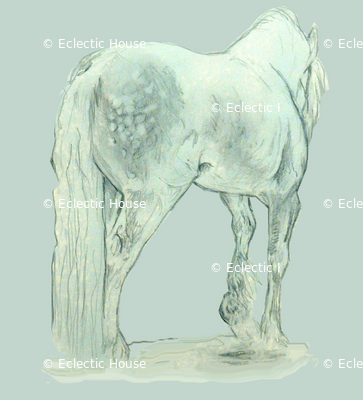 Gypsy Horse on blue-gray