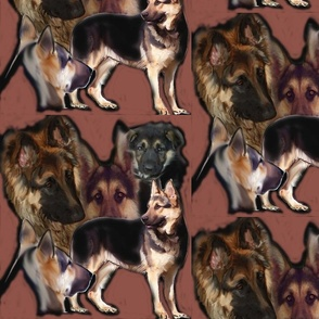 German shepherd Collage