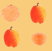 colored pencil fruits on peach