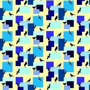 Birds & Boxes