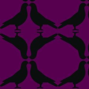 Pigeon Circles-BkP