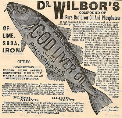 Wilbor's Fishes