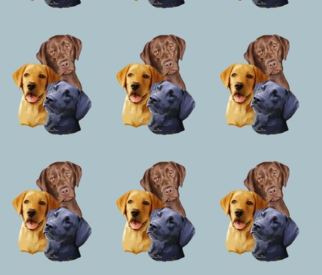 640004_rlabrador_retriever__3_heads_shop_preview