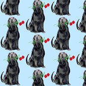 Rrblack_lab_with_roses2_shop_thumb