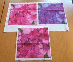 Rrrrrmini_pink_b_flowers_comment_84021_preview