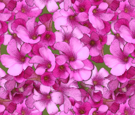 Pink Wood Sorrel fabric by nezumiworld on Spoonflower - custom fabric