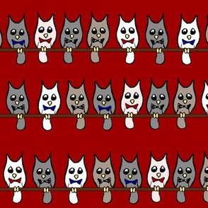 Owls with Bow-ties