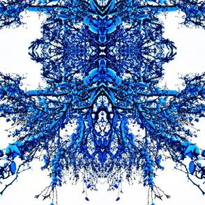 bluewinter