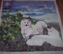Rrrsamoyeds_comment_90192_preview