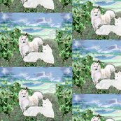 Rrsamoyeds_shop_thumb
