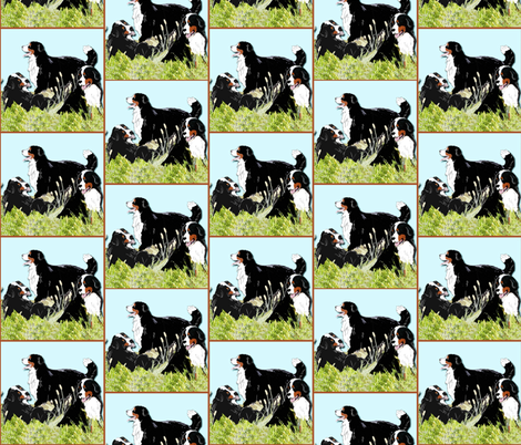 BERNESE MOUNTAIN DOGS IN THE GRASS fabric by dogdaze_ on Spoonflower - custom fabric