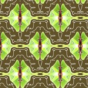 Rrrrrluna_moth_design_ed_ed_ed_shop_thumb
