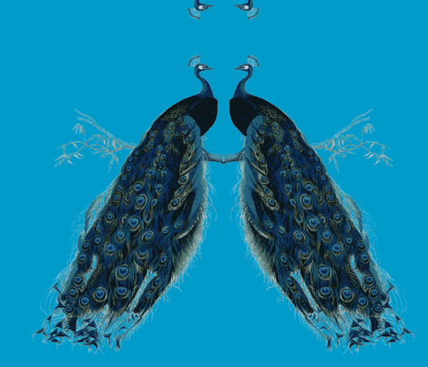 peacock coupon fabric by miss_blümchen on Spoonflower - custom fabric