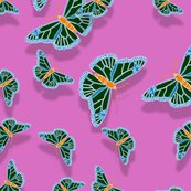 Rrrrrr001_butterflies-contest_shop_thumb