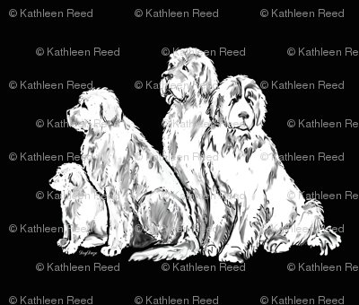smaller pattern  Newfoundland Dog Group