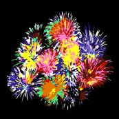 Rrrfireworkscolor3_shop_thumb