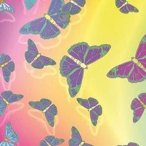 Butterfly Motif 21