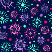 Summer Night Fireworks