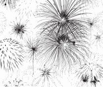 Rfireworks_shop_thumb
