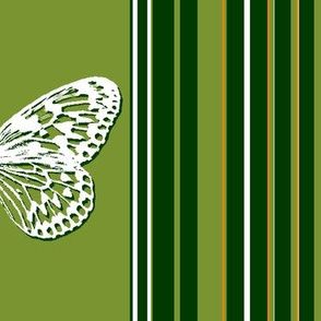Green striped butterflies