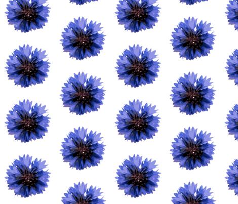 cornflower-ed fabric by miss_blümchen on Spoonflower - custom fabric