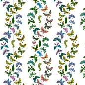 Rrrbutterflies_shop_thumb