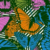 Rrrbutterfly_shop_thumb