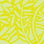 FERN - Lime